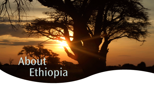 about-ethiopia